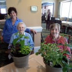 Peggy presenting Viola and Mary their winning raffle plants!